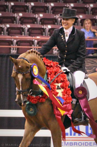 Patience Prine Carr Arabian Horse Exchange